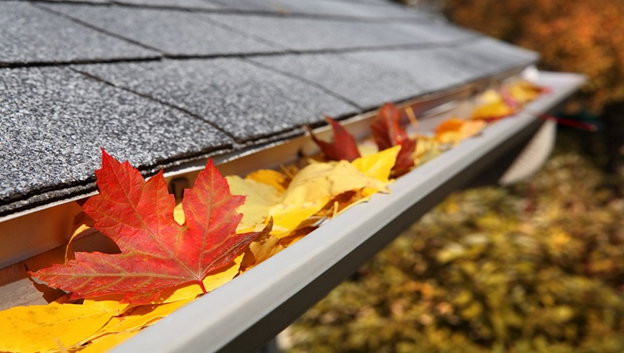 Why You Need to Clean Your Gutters