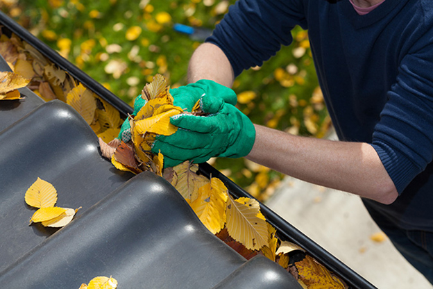 Clean Your Gutters Stress-Free with the Best Tools on the Market